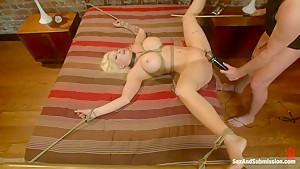 Tales of a Submissive Housewife