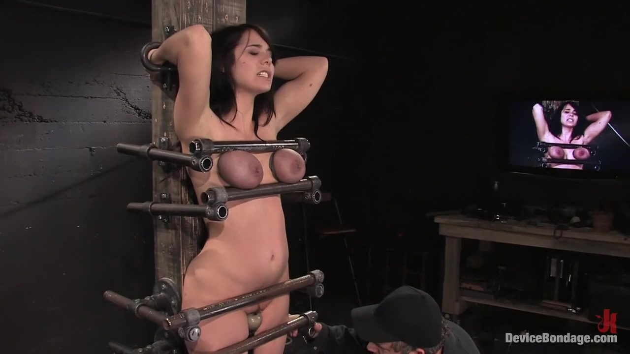 Enlivening beautys taut beaver Naked Porn tube