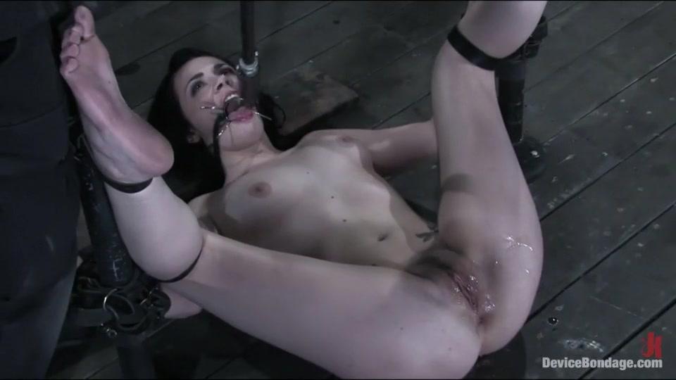 Porn Base Shayla got with Ashton