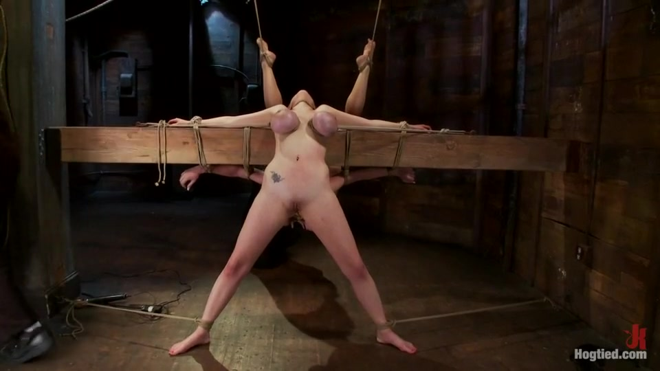 Nude Photo Galleries Cartoon Sex Games
