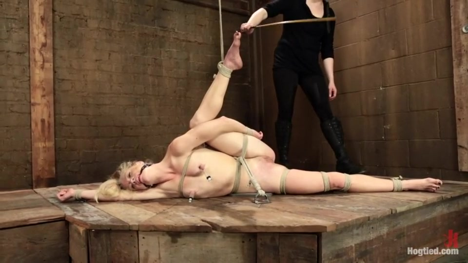 All porn pics Mucor hiemalis asexual