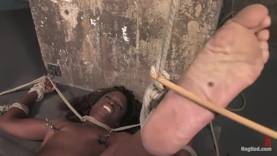 Seel Pack Chudao Porn tube