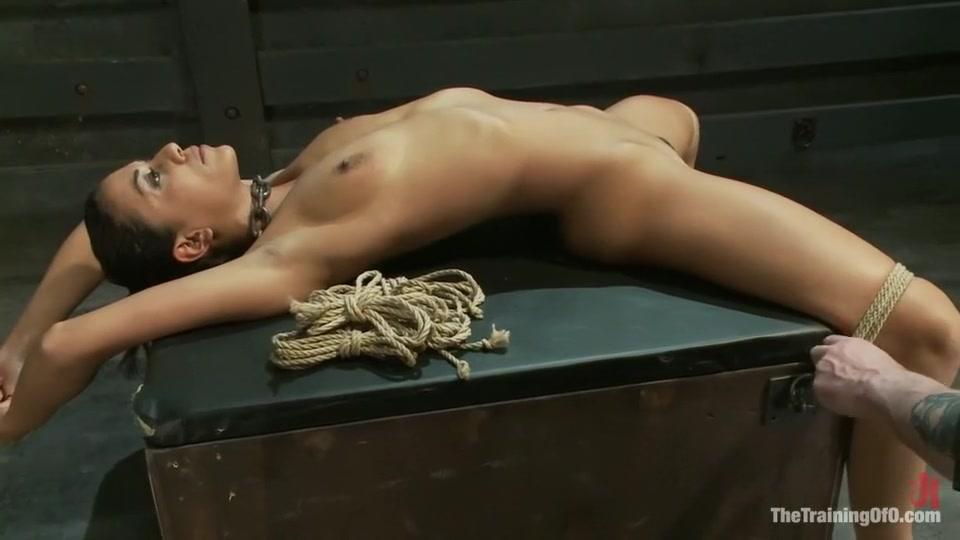 hardcore porno videos for free Quality porn