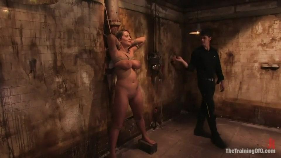 Porn Base Quand harry rencontre sally film
