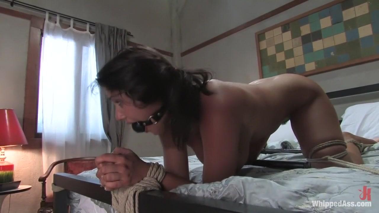 Porn Base Loud bbw gets fucked real hard