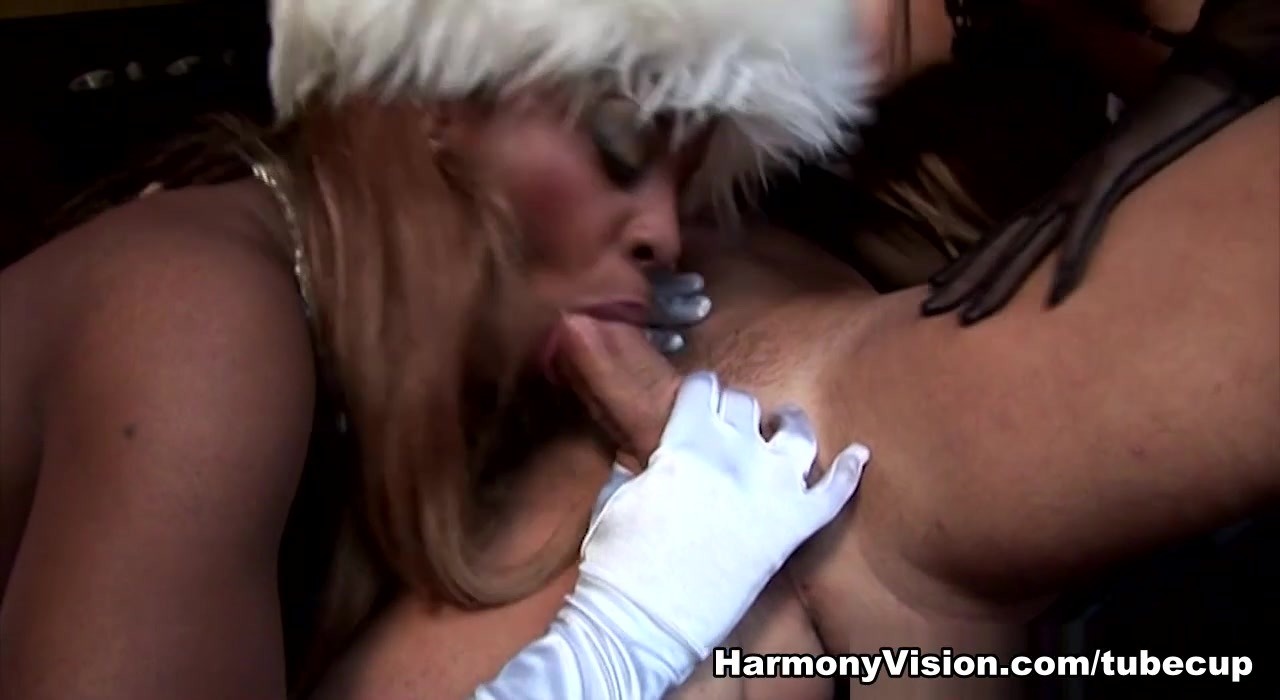 XXX Video Sexually reproduction