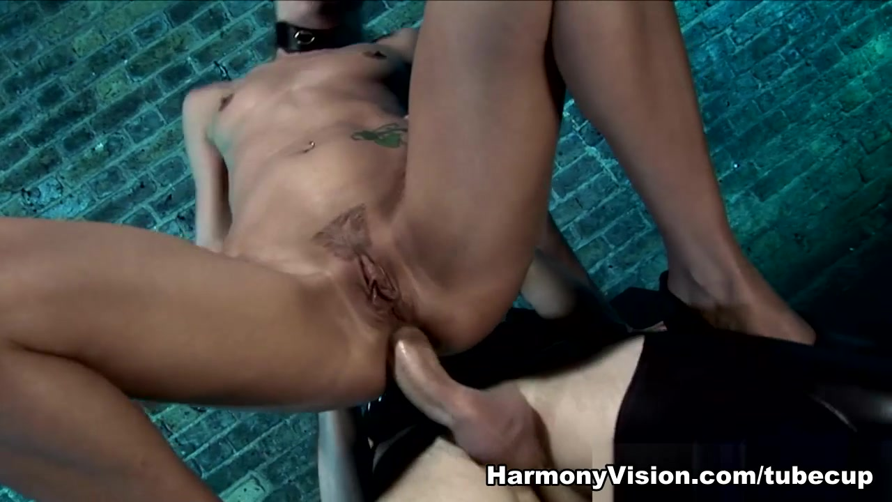 Transsensual venus lux gives it to milf Porn archive