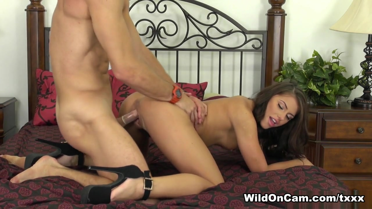Asian shemales san diego Quality porn