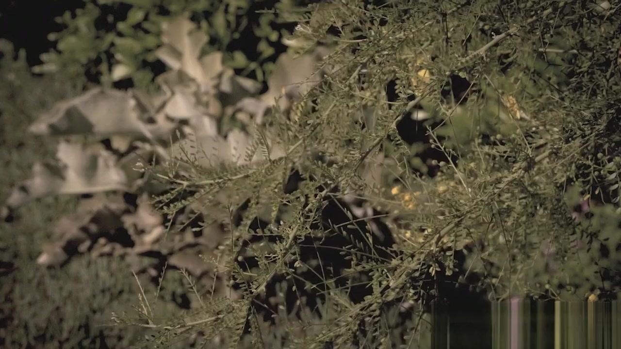 Military spouse dreading the friendship hookup scene New xXx Video