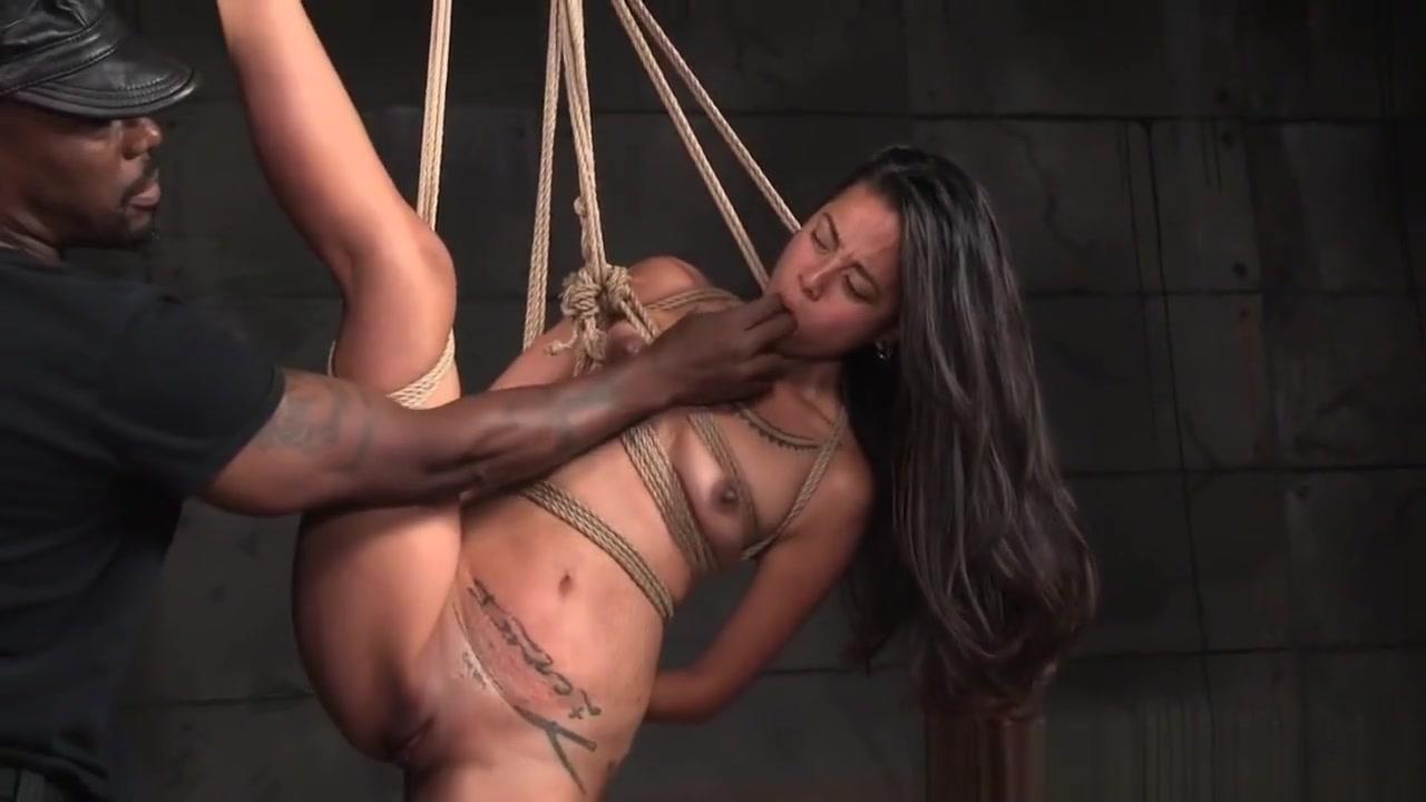 Free bbw shemale porn videos xXx Pics