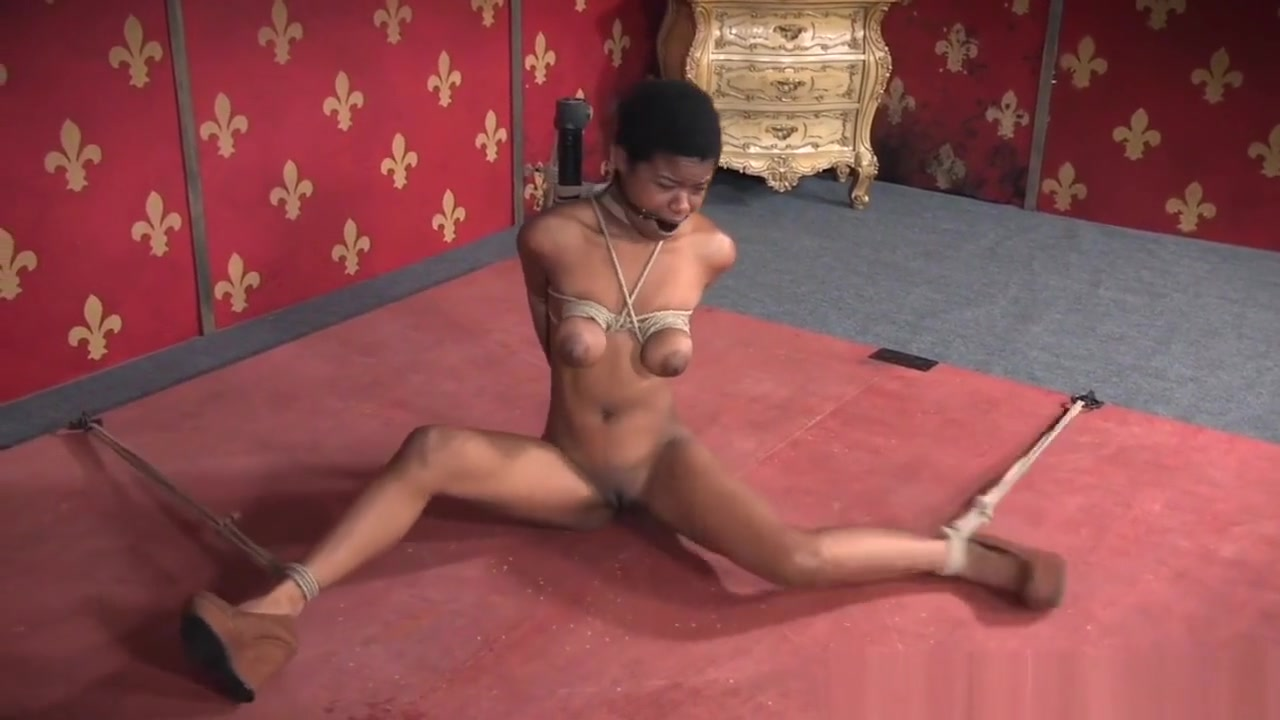 Porn pictures Mature shemale blowjob