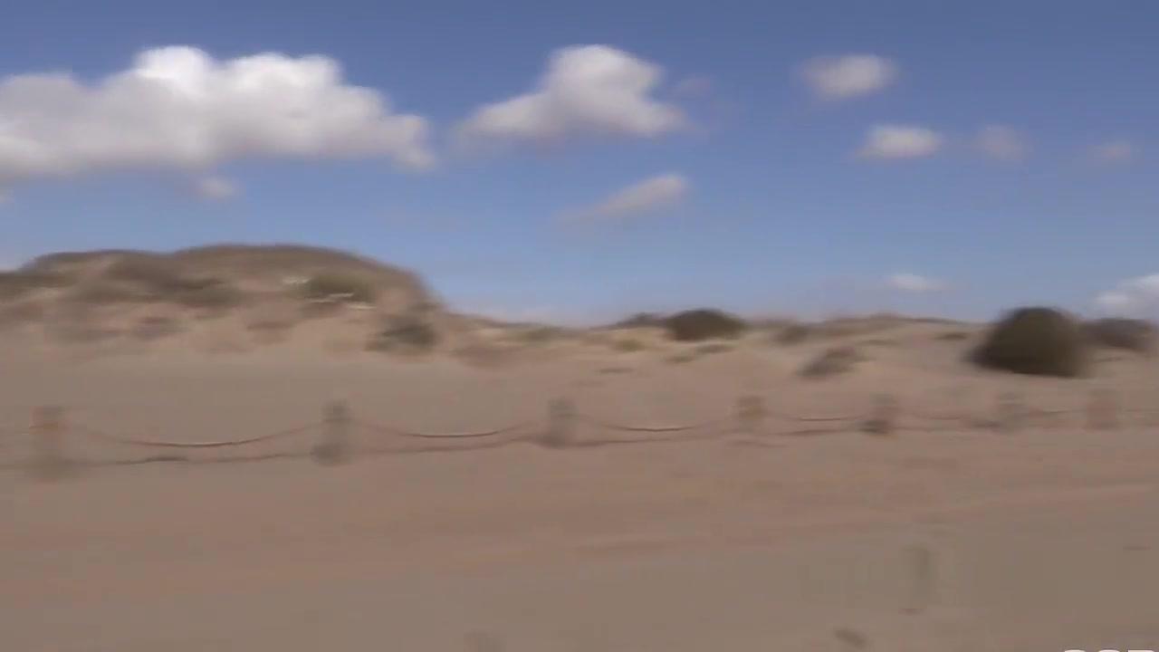 Hot homemade outdoor blowjob video Adult videos