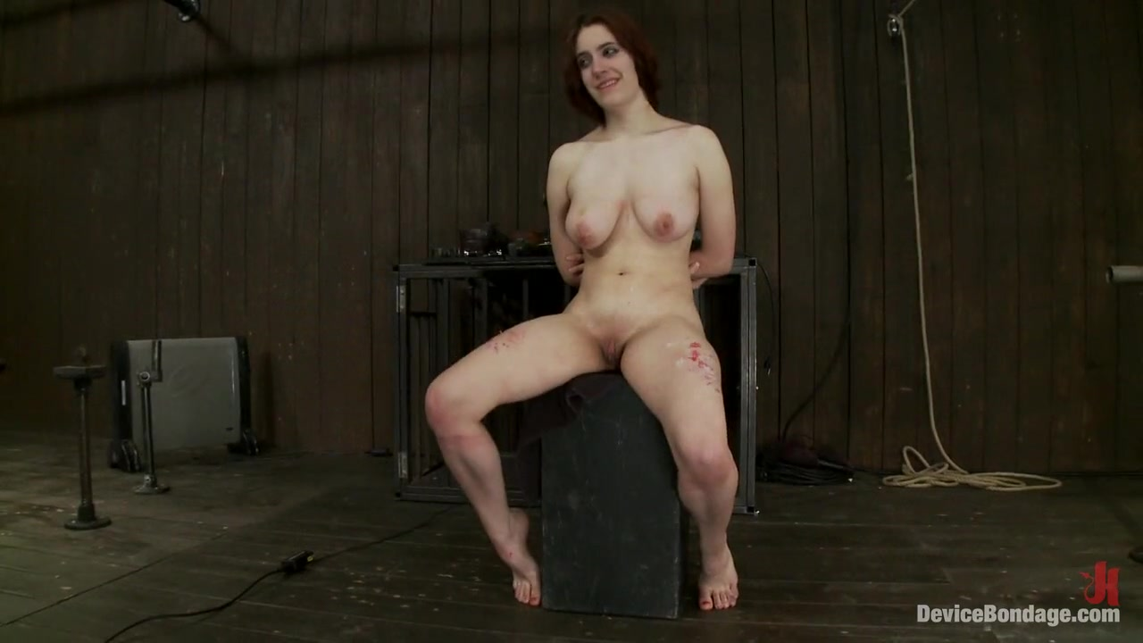 Sexy Galleries 20 inch dildo and buy
